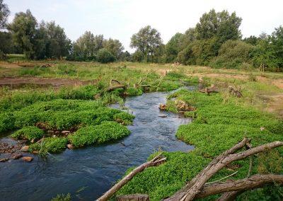 Wasser‐ und Bodenverband Warendorf‐Nord